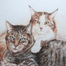 Lynxie and Corky