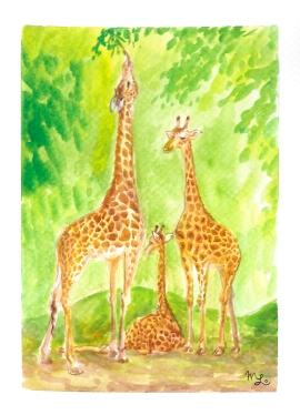 Day42_MartinaLo_Giraffes